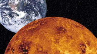 Rocket Lab будет искать жизнь на Венере